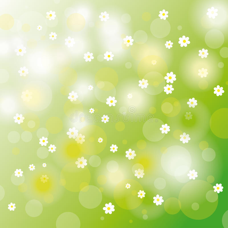Easter Card Background White Flowers royalty free illustration