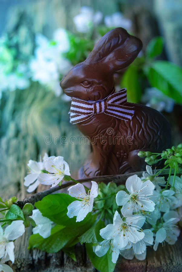 Download Easter card with bunny stock photo. Image of happy, rabbit - 85134738