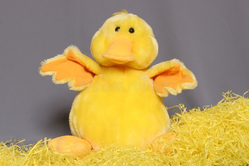 Easter Chick. A stuffed animal for Easter royalty free stock photos