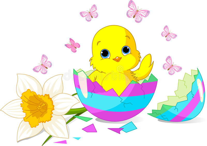 Download Easter chick surprise stock vector. Image of narcissus - 19125900