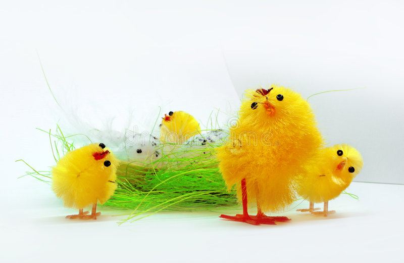 Download Easter Chickens Stock Photo - Image: 8591850