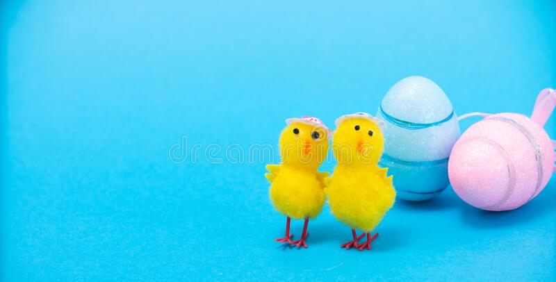 Easter Chicks and Eggs in Nest.concept of the Easter holiday and greeting cards. decorative chickens with Easter. Eggs stock photography