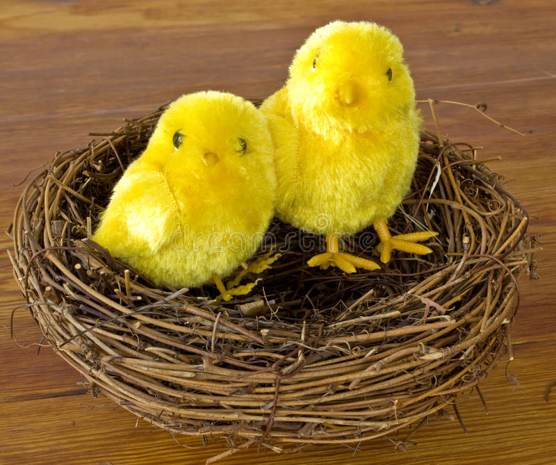Easter chicks in a nest. On a wooden table royalty free stock photography