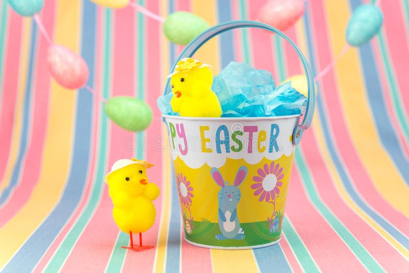 Easter chicks and tin bucket in spring colours. stock photo