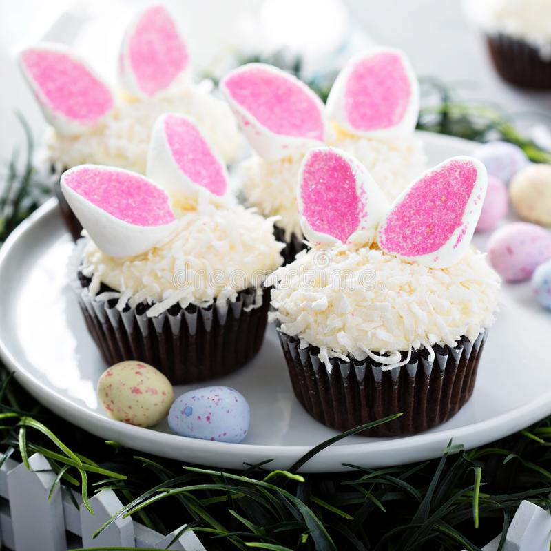 Easter chocolate cupcakes with bunny ears. And coconut flakes stock photography