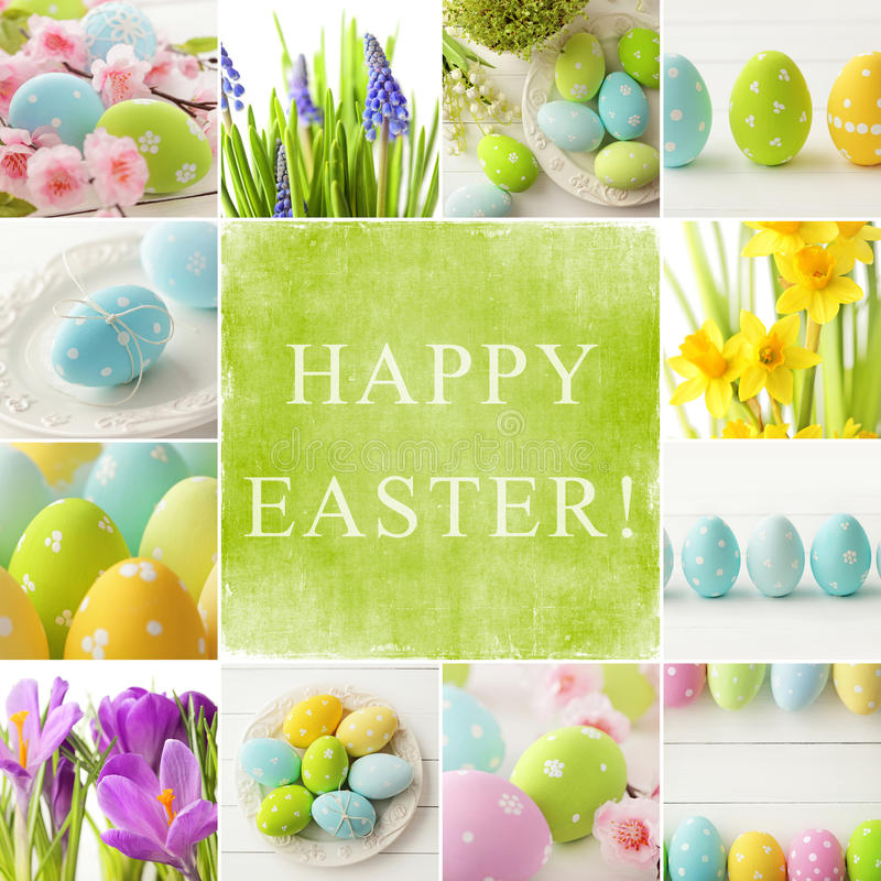 Easter collage. Easter eggs and spring flowers stock images