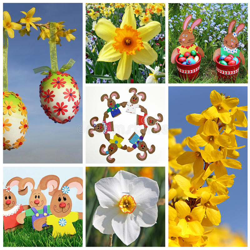 Easter Collage of seven pictures. Easter eggs with paper flowers (selfmade), blooming narcissus, easter nest with rabbits (selfmade), easter bunnies holding royalty free stock photography
