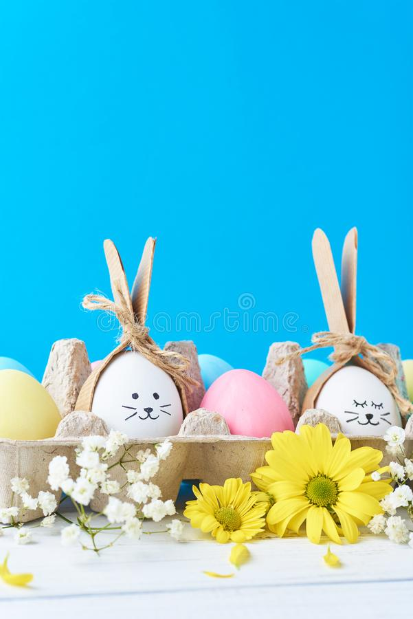 Easter colored eggs in paper tray with decorationd on a blue background stock photography