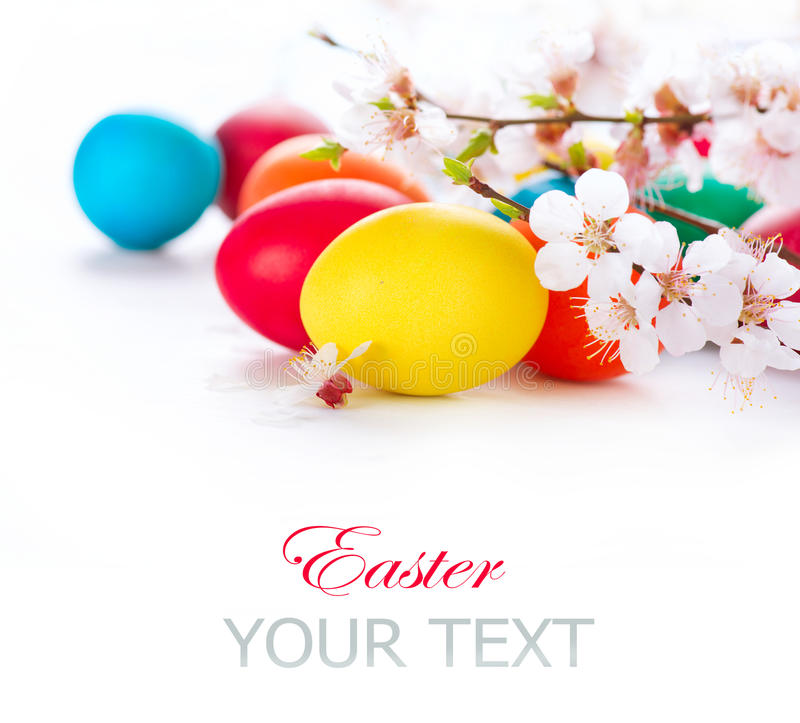 Easter. Colorful easter eggs. With spring blossom flowers stock photography