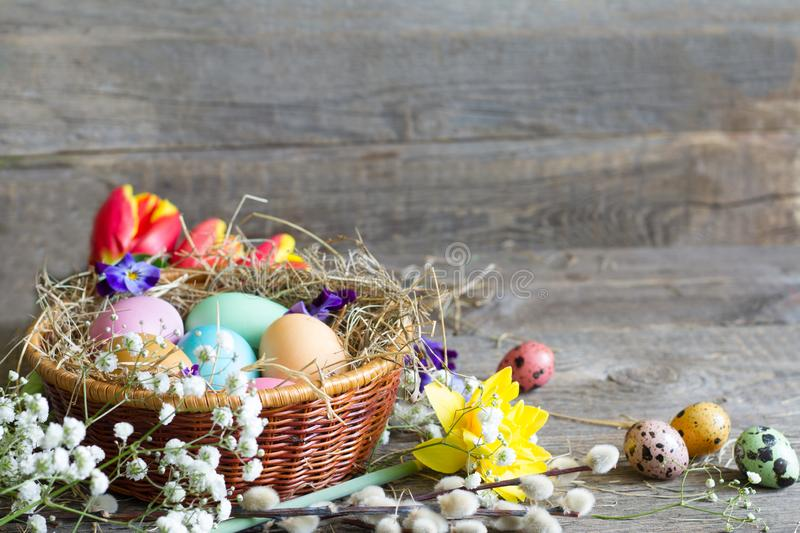 Easter colorful eggs in the nest with flowers on vintage wooden boards. Closeup royalty free stock photo