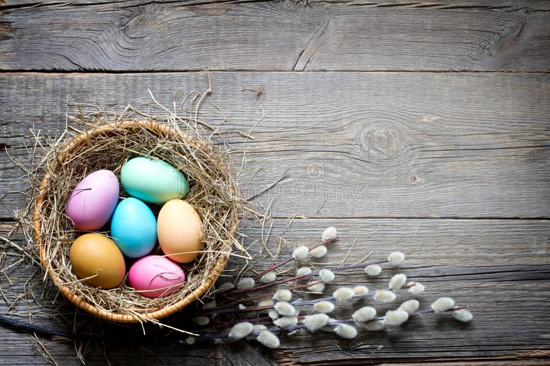 Easter colorful eggs in the nest with flowers on vintage wooden boards and empty space royalty free stock photos