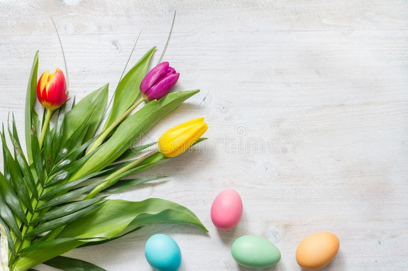 Easter colorful spring tulips with palm and eggs decoration on white wooden natural background royalty free stock photography