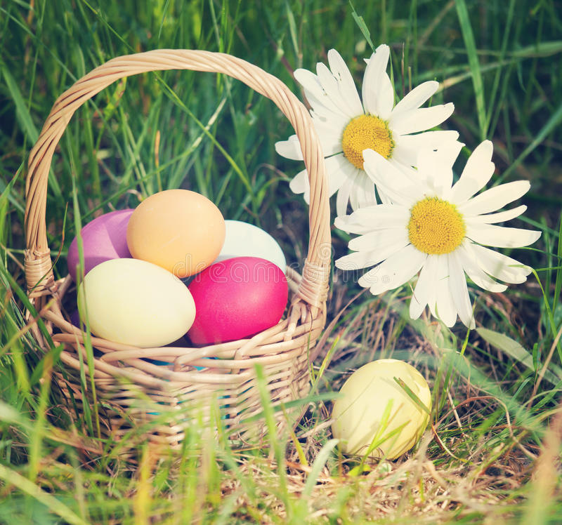 Easter concept - eggs, basket and daisies. Vintage retro hipster. Style version stock photos
