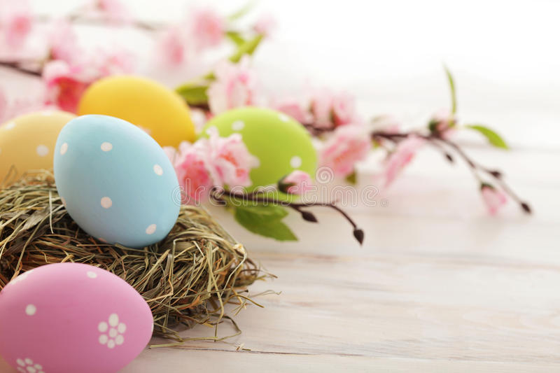Easter decoration. Colorful easter eggs and cherry blossom flowers royalty free stock image
