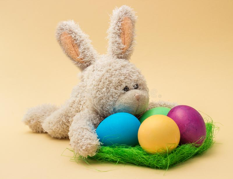 Easter decoration with cute plush rabbit, eggs and grass royalty free stock image