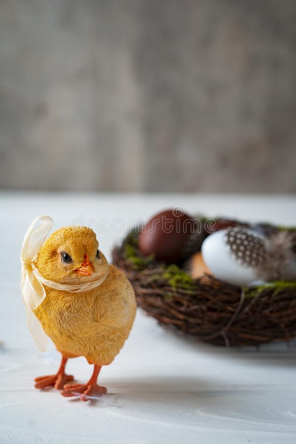 Easter decorative chicken with a bow sits inside a nest. Easter decorative chicken with a bow stands next to a nest and eggs on a white and gray wooden stock photography