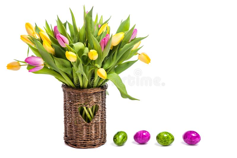 Congratulations on Easter. Tulips in a vase and easter eggs. Isolate on white background royalty free stock images