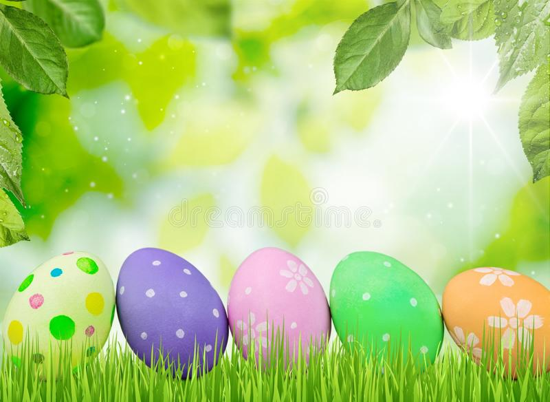 Easter. Egg grass background color colorful blue stock photo