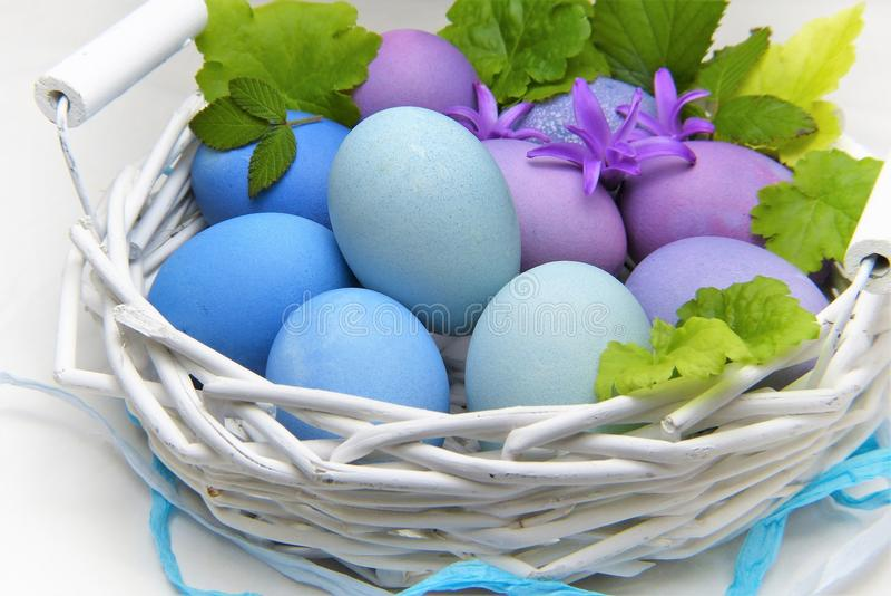 Easter Egg, Egg, Easter royalty free stock photography