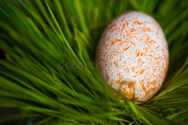 Download Easter egg stock photo. Image of spring, seasonal, elegance - 26185930