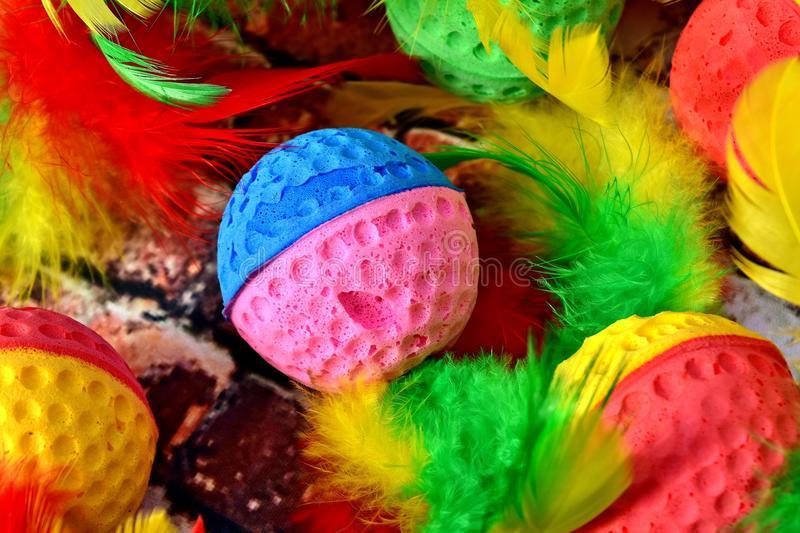 Easter Egg, Close Up, Feather stock photography