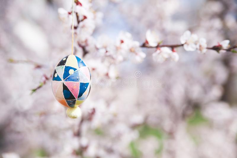 Easter egg on a floral background stock image
