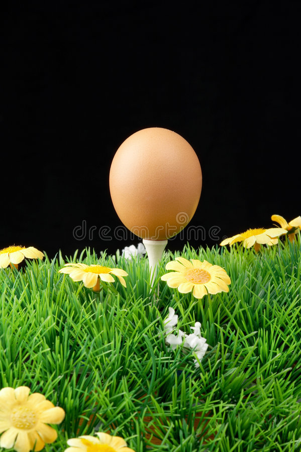 Download Easter egg on golf tee stock image. Image of boiled, ball - 1999513