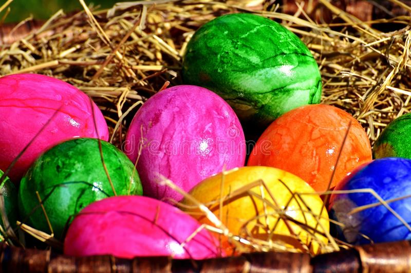 Easter Egg, Local Food, Easter, Egg stock photography