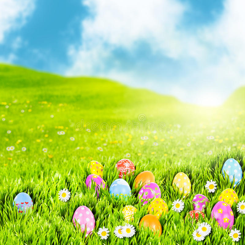 Easter egg meadow. Easter eggs nestled in a sunny meadow stock photography