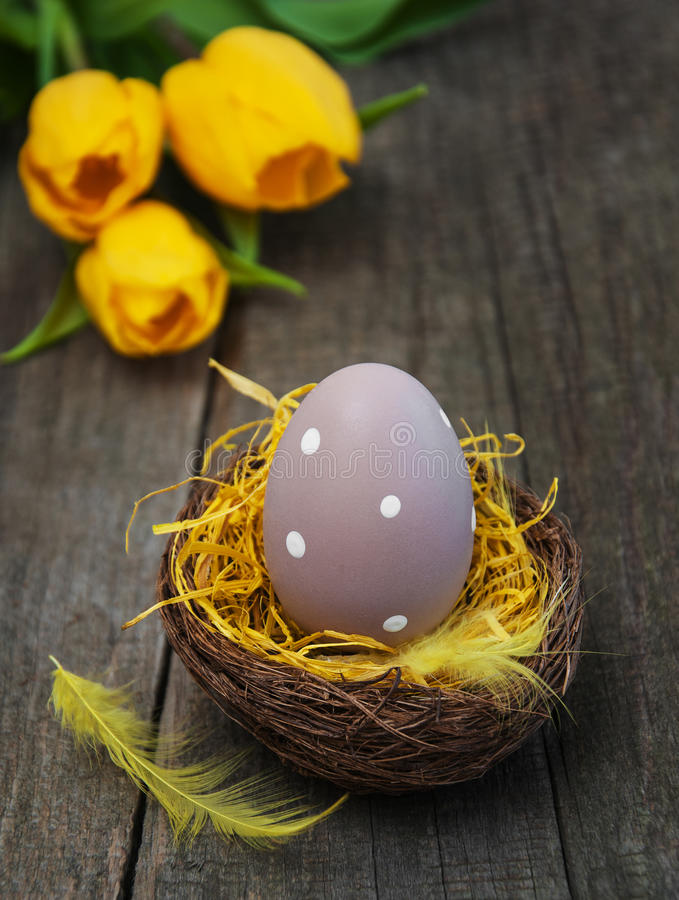 Download Easter egg in a nest stock image. Image of holiday, green - 88059881