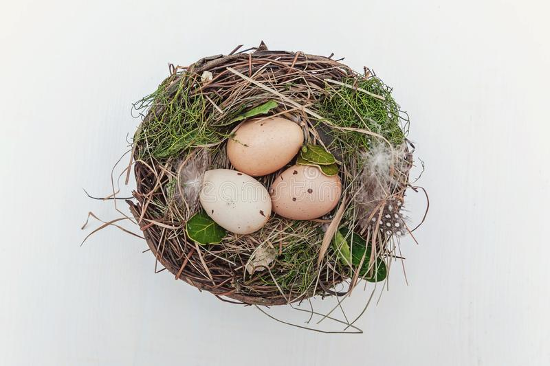 Easter egg in nest on rustic wooden planks stock images