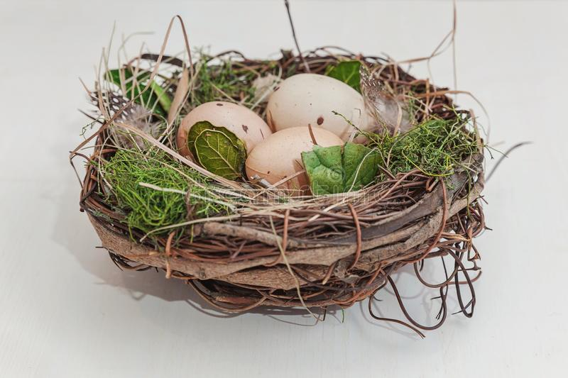 Easter egg in nest on rustic wooden planks royalty free stock photos