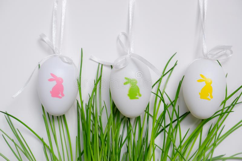 Easter eggs hanging in green plant. Easter egg with rabbits and ribbons hanging above green plant chives white background stock photography