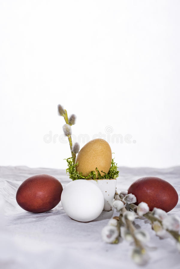 Easter egg with tulips and willow twig. royalty free stock photography