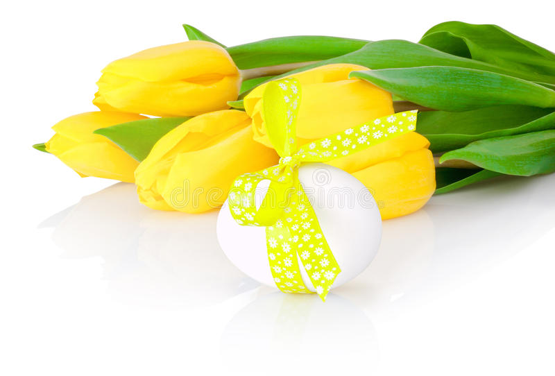Easter egg and yellow tulip flowers isolated on white background stock image