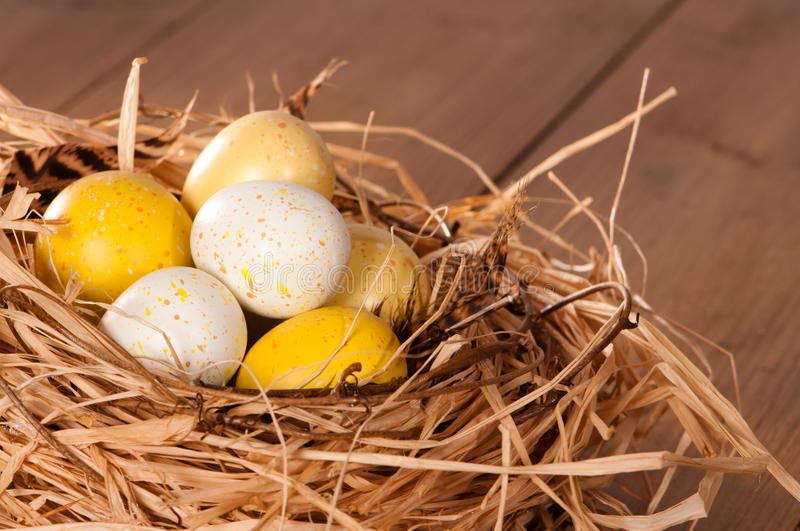 Download Easter Eggs stock photo. Image of color, eggs, feathers - 12640258
