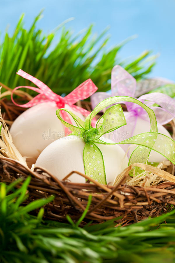 Easter eggs. In a nest on the grass royalty free stock image