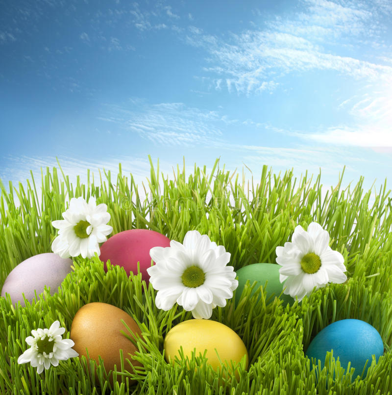 Easter eggs. Concept of easter eggs on green grass and yellow straw with flowers background against abstract sky royalty free stock photography