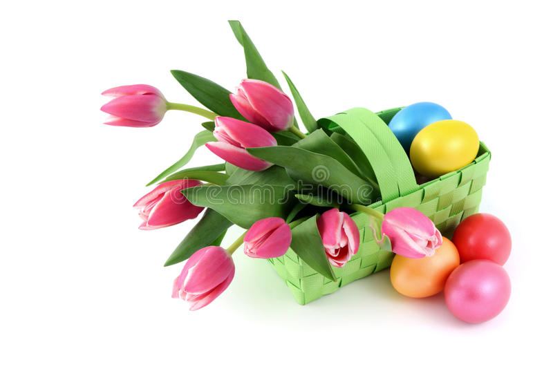 Easter eggs with a basket and bunch of pink tulips on isolated w royalty free stock photos