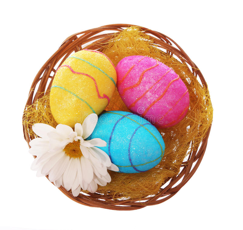 Easter eggs in basket with chamomile flower isolated stock image