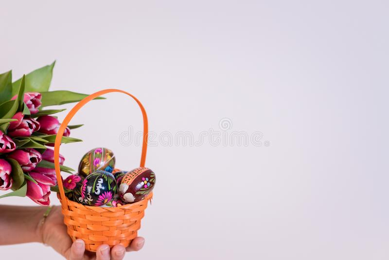 Easter eggs in basket and colorful tulips in hand royalty free stock photo