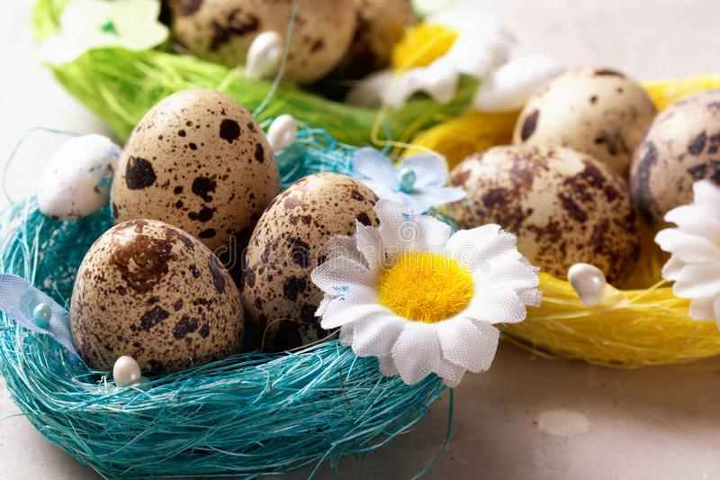 Easter eggs in a basket with flowers stock image