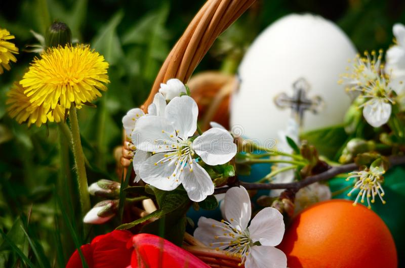 Easter eggs in a basket with spring grass and flowers stock images