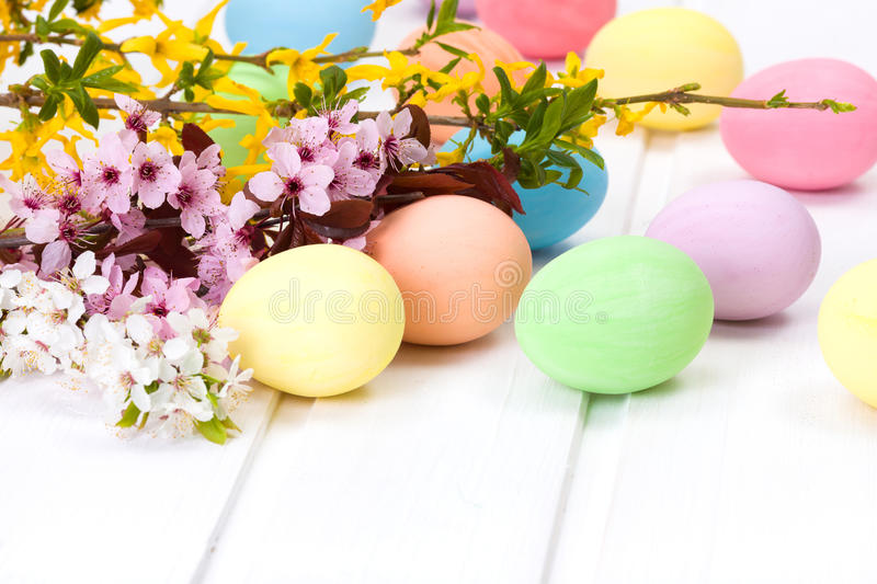 Easter eggs with blooming branch stock image