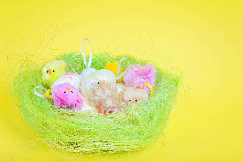 Easter eggs and chickens in nest stock photos