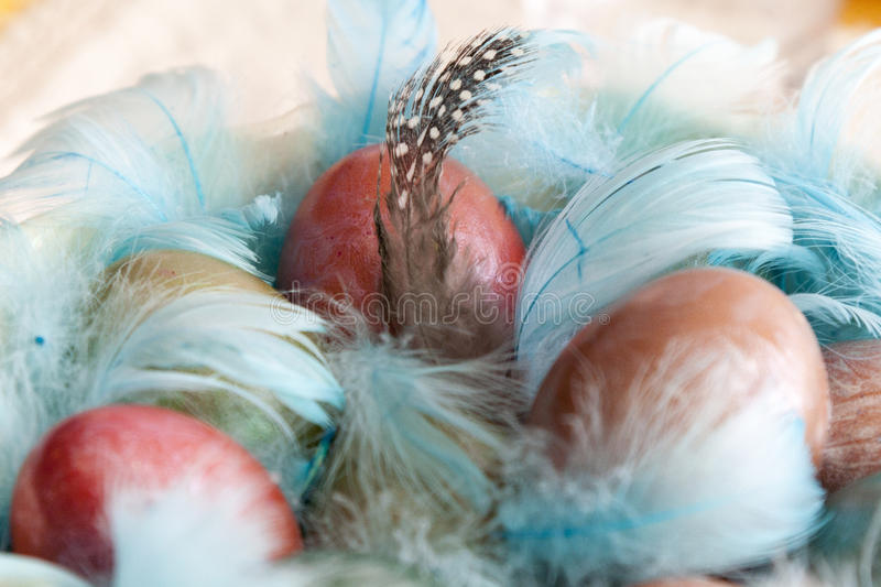 Download Easter eggs stock image. Image of hand, festive, blue - 34360767