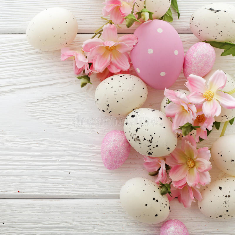Easter eggs. Colorful easter eggs and spring flowers stock image