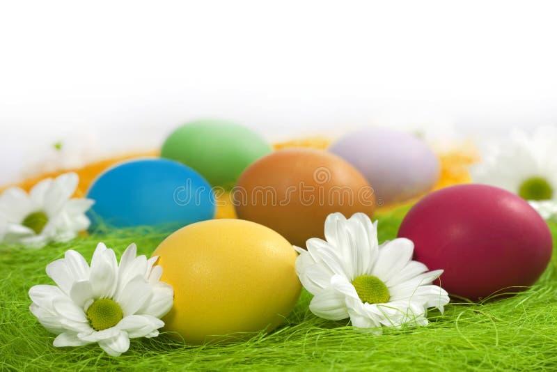Easter eggs concept stock photo