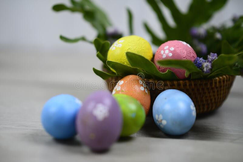 Easter eggs decoration on Easter day. With Copy paste for your text or design. Background of colorful Eastereggs decoration. Easter eggs decoration on Easter royalty free stock photo