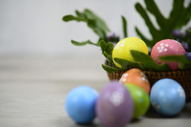 Easter eggs decoration on Easter day. With Copy paste for your text or design. Background of colorful Eastereggs in a wooden. Easter eggs decoration on Easter royalty free stock photo